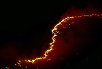 A wall of flame snakes up an Idaho ridge. Lightnening sparked it?and dozens of other blazes that roared across the bone-dry Great Basin range land set off by an electrical storm.   ..   More than a billion dollars is spent annually suppressing wildfires that burn millions of acres of western land. <br />