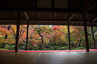 Enkoji was founded in 1601 by Tokugawa Ieyasu - its mission was to promote learning and scholarship in Japan. As a result, both monks and laymen were allowed as students. Enkoji is well known for its autumn leaves.