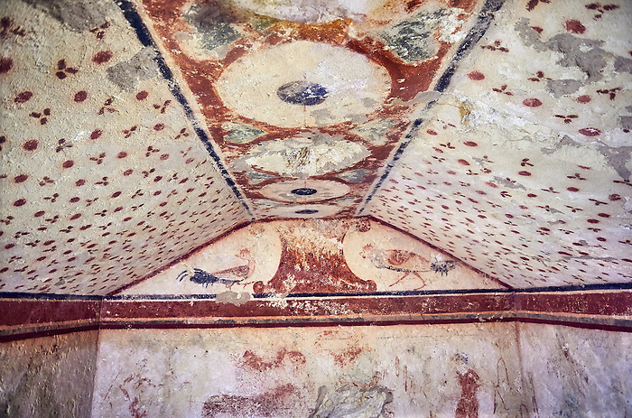 """Underground Etruscan tomb Known as """"Tomba dei Fiorellini"""" A single chamber with double sloping ceiling decorated with red circles and three petalled flowers. In the tympanium on the back wall is a painted pillar and two cockerals, a couple are depicted banquetting bellow. 475-450 BC. Excavated 1960 , Etruscan Necropolis of Monterozzi, Monte del Calvario, Tarquinia, Italy. A UNESCO World Heritage Site."""