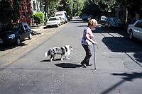 Woman crossing street walking her dog, Condesa. Street shots Mexico City