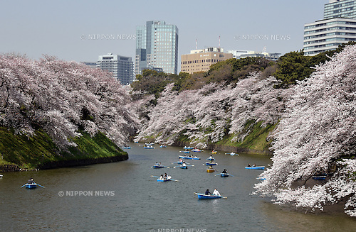 March 30, 2015, Tokyo, Japan - Some people prefer to view cherry blossoms from rowing boats at Tokyo's Chidoriga-fuchi imperial moat on sunny Monday, March 30, 2015, as the nation's capital appreciate their ethereal, ephemeral, delicate beauty in accord with centuries-old tradition.  (Photo by Natsuki Sakai/AFLO)