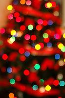 AJ Alexander - Christmas tree lights.Photo by AJ Alexander  .#0004