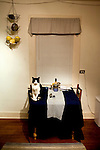 Cats.Tuxedo cat on table with blue tablecloth.