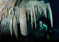 RX0758-D. scuba diver (model released) admires stalactites in a submerged chamber accessed via a cenote in the jungle. As this decorated room is near an exit to the surface, certified open water divers are permitted here, whereas exploring true caves requires additional training and specialized equipment. Riviera Maya, Yucatan Peninsula, Mexico.<br /> Photo Copyright &copy; Brandon Cole. All rights reserved worldwide.  www.brandoncole.com
