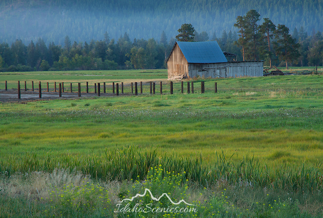 Montana, western, Morning sun lights a pasture and rural outbuilding in late summer with smoky skies.