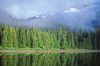 Forest and mountains at Eliza Harbor at Admiralty Island National Monument in Tongass National Forest, Alaska, AGPix_0692.