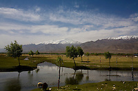 Scenery on the outskirts of Leh town on 1st June 2009. Leh is 3505m above sea level, in the Indian Himalayan mountains, in the region of Ladakh, Jammu & Kashmir, India.  Photo by Suzanne Lee