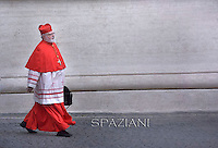 cardinal Sean patrick O'Malley.Pope Francis,  at St. Peter's Basilica in Vatican.during the mass New Cardinals on February 15 2015