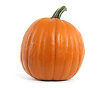 Large pumpkin isolated on white background