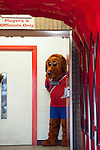 Dagenham and Redbridge 1 Burton Albion 3, 21/02/2015. Victoria Road, League Two. The Dagenham mascot. Burton Albion moved to the top of League Two following a hard-fought win over Dagenham & Redbridge played in-front of 1,718 supporters. Photo by Simon Gill.
