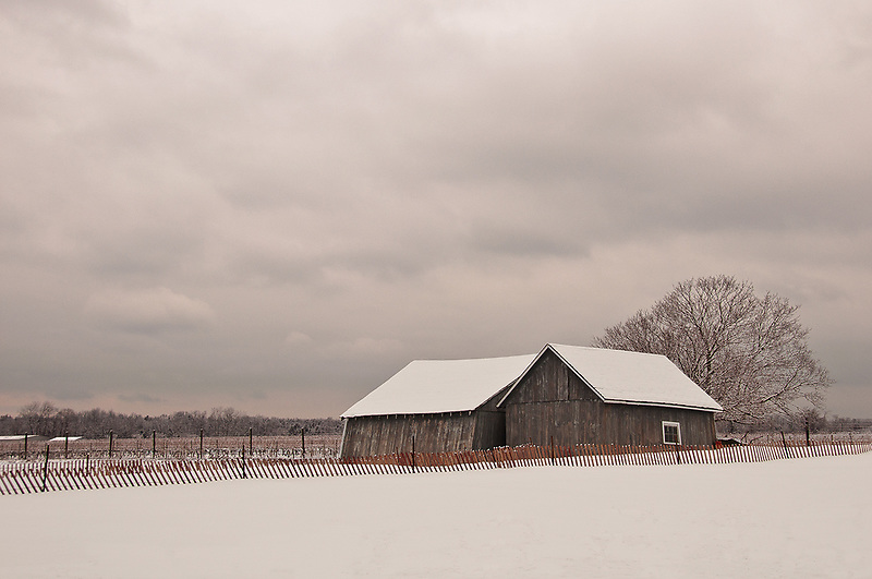 &quot;Kissing Barns&quot;<br />