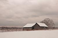 &quot;Kissing Barns&quot;<br /> Riverhead, Long Island
