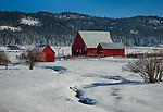 Idaho, New Meadows. Red barns in a snowy scene.