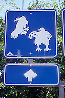 Cockfighting road sign in El Quelite, Sinaloa, Mexico