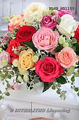 Flowers - studio photos