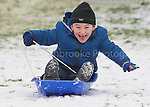 Harpenden Snow  19th January 2013