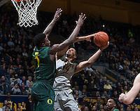 CAL Basketball vs Oregon, February 25, 2015