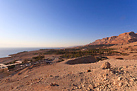 A Nubian ibex surveys the Dead Sea coast and landscape around the Ein Gedi youth hostel, nature preserve, and kibbutz (background).