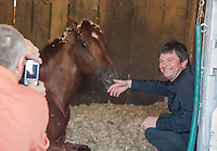 Kentucky Derby winner I'll Have Another tries to take a nap as Paul Redham Racing Manager Jamie Mccalamont gets his photo taken with him the morning after his win in the Kentucky Derby at Churchill Downs in Louisville, Kentucky on May 6, 2012.