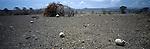 Turkana  manyatta  victims of a raid by the neighbouring Toposa tribe  Northern Turkana, Kenya
