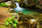 Cascade on Hare Creek, Lime Kiln State Park, Big Sur, California USA