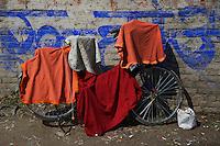 During the Balaju mela Hindu bating festival, Kathmandu, Nepal
