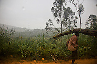 A man  carrying  reeds on his head during a rainstorm in Ituri province.