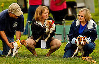 Event photography from the 2012 annual Queen's Cup Steeplechase horse race, held in Mineral Springs NC the last Saturday of each April. Attracting thousands of spectators annual for the sport and the social outing, the Queen's Cup includes Jack Russell Terrier Races.