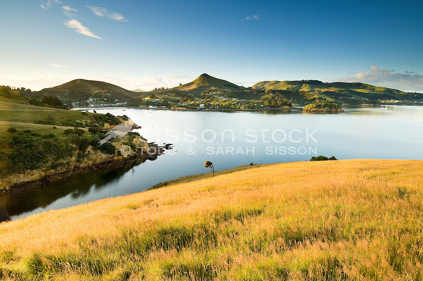 Harbour Cone and Portobello village in golden morning dawn light | water | blue sky | Otago harbour Dunedin South island New Zealand