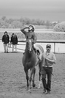 The winning jockey saying a little prayer while his horse is led to the winner's circle at Keeneland Race Course, Lexington, KY.  Infrared (IR) photograph by fine art photographer Michael Kloth.