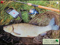 BNPS.co.uk (01202 558833)<br /> Pic: TomWren/BNPS<br /> <br /> 7lb Chub.<br /> <br /> A mystery fishing &quot;genius&quot; has sparked intrigue after pinning photos of his monster catches inside an angling club's riverbank lodge - in an enigma being dubbed 'Good Will Fishing'.<br /> <br /> The anonymous fisherman has systematically worked his way through a tough stretch of the River Avon and pulled in 19 once-in-a-lifetime catches in the last 12 months.<br /> <br /> And much like 1997 film Good Will Hunting, in which Matt Damon's genius character anonymously solves near-impossible mathematical equations while working as a janitor at a prestigious university, the angling Einstein showcases his brilliance in secret.
