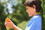 Young smiling boy in the park - with shallow depth of field and light background - copy space