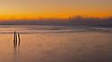 North America, USA, California, San Francisco. San Francisco skyline with fog