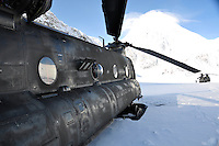 Chinook helicopters on Denali