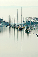 Connecticut, Rowayton, boats in a row in harbor