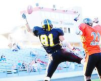 Mustangs vs Milwaukee Venom 8/14/10 | IFL Playoffs | Madison Mustangs photos by Greg Dixon