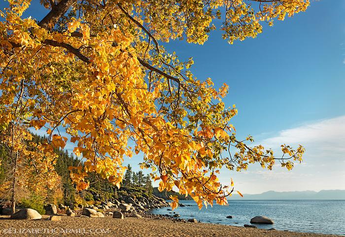 Autumn at Sand Harbor