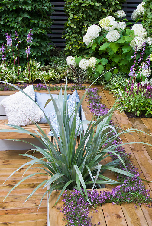 Sunken deck landscaping and garden plant flower stock for Outdoor plants and flowers