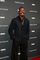 BURBANK, CA - AUGUST 29: Colman Domingo<br />at the Premiere Of OWN's &quot;Queen Sugar,&quot; Warner Brothers Studios, Burbank, CA 08-29-16Credit:  David Edwards/MediaPunch