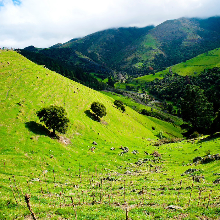 Beautiful new zealand landscape on the lewis pass for Landscaping christchurch