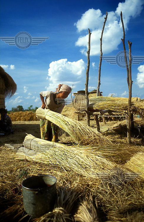 Peasant woman preparing dried bundles for roofing material.