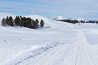 Road through the Hayden Valley in Yellowstone National Park during winter