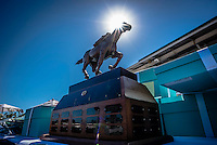 OLDSMAR, FLORIDA - FEBRUARY 11: The Sam F. Davis Stakes trophy awaits it's winner, at Tampa Bay Downs on February 11, 2017 in Oldsmar, Florida (photo by Douglas DeFelice/Eclipse Sportswire/Getty Images)