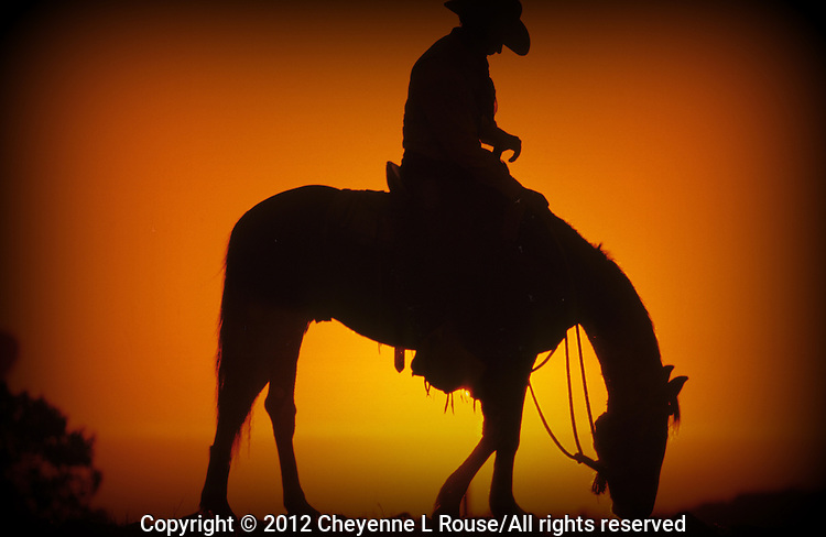 Cowboy silhouette at sunset - Arizona (with vignette)