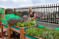 Brooke Ziebell  in the rooftop garden at Broock School