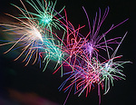 Fireworks - (39 photos)