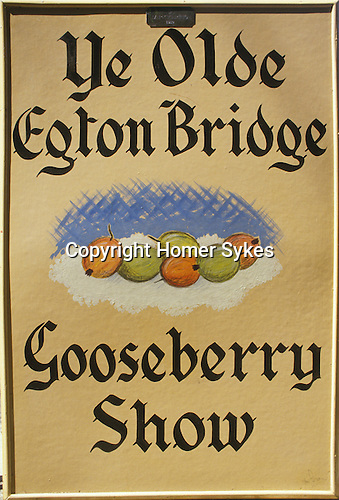 Egton Bridge Gooseberry Show Yorkshire. UK