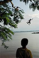 Laos 2007: Green Monsoon