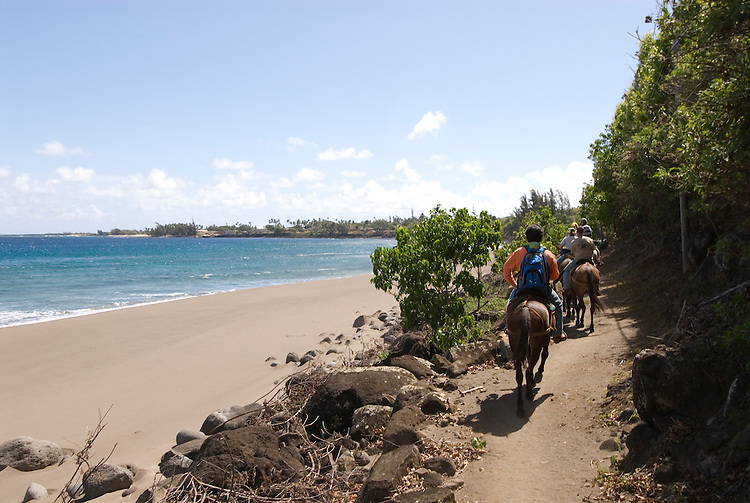 Hawaii: Molokai, the Mule Ride from the cliff tops down 1,600 feet to the leper colony at Kalaupapa..Photo himolo149-72223.Photo copyright Lee Foster, www.fostertravel.com, lee@fostertravel.com, 510-549-2202
