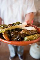 Lunch at Hacienda de Bustillos, apple orchards and farm in , ciudad Cuahutemoc. Chihuahua, Mexico. Aromas y Sabores with Chef Patricia Quintana